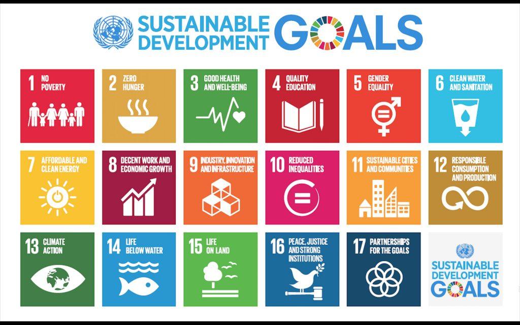 blog-sannie-sustainable_development_goals